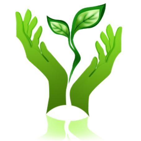 Экология в современном мире